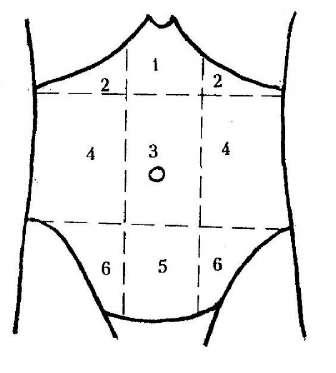 Клиническая топография